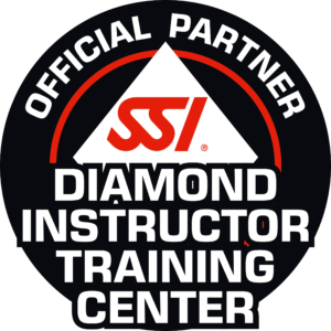 SSI_LOGO_Diamond_Inst_Tr_Center